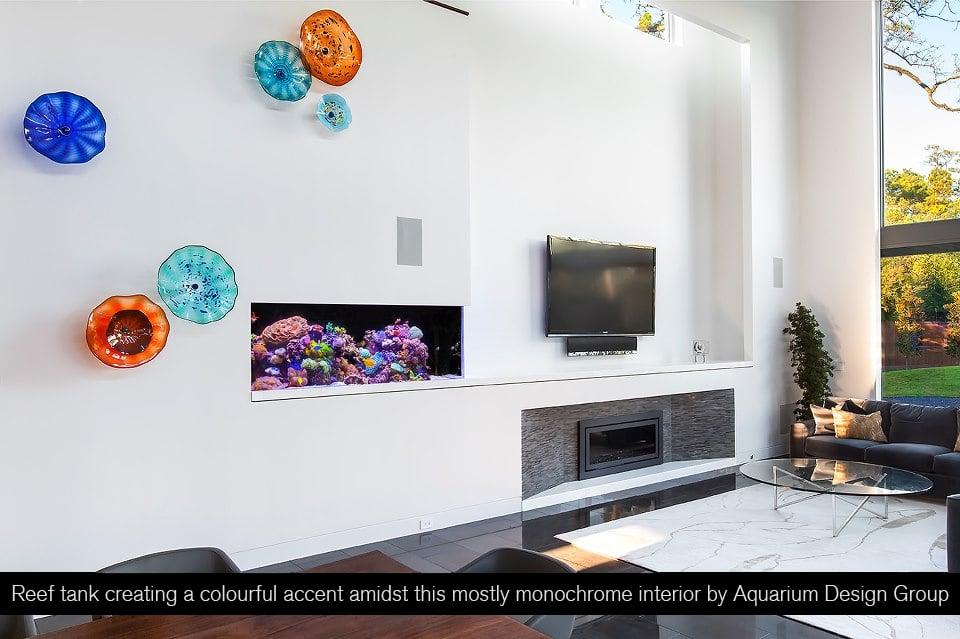 6 Tips for integrating a small aquarium into your interior