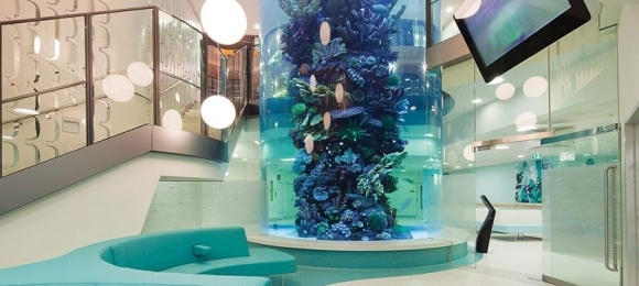 Clinical Benefits of Aquarium Design