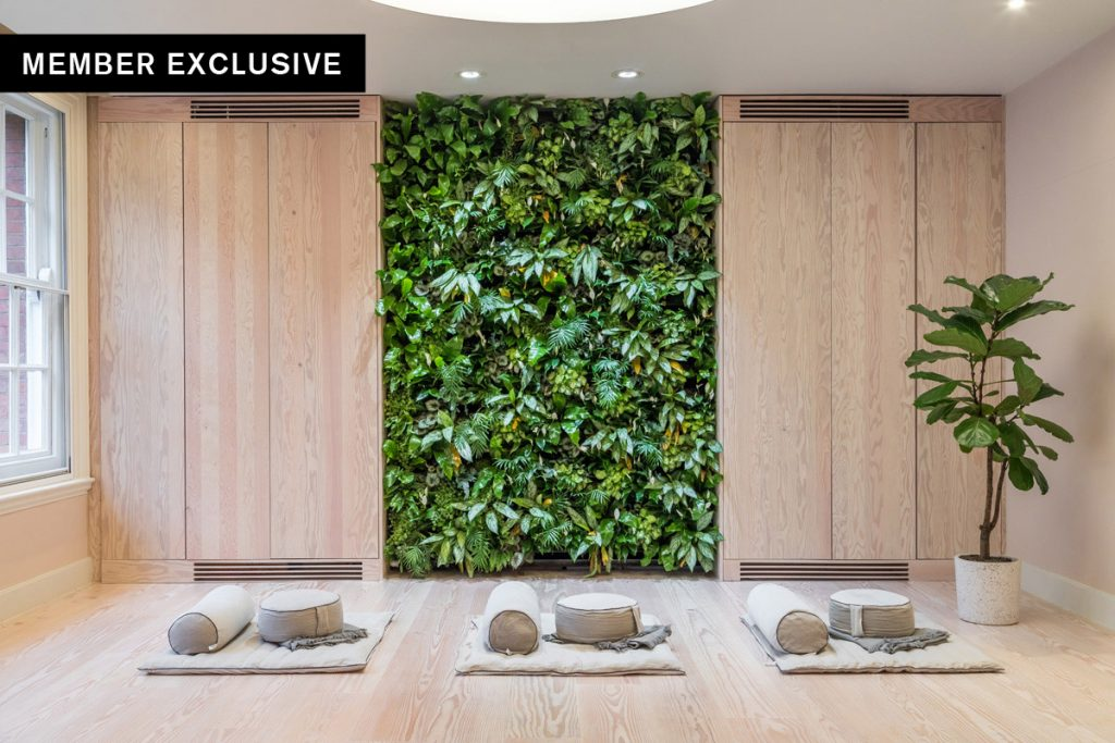 Designing for Nature Connections and Wellness