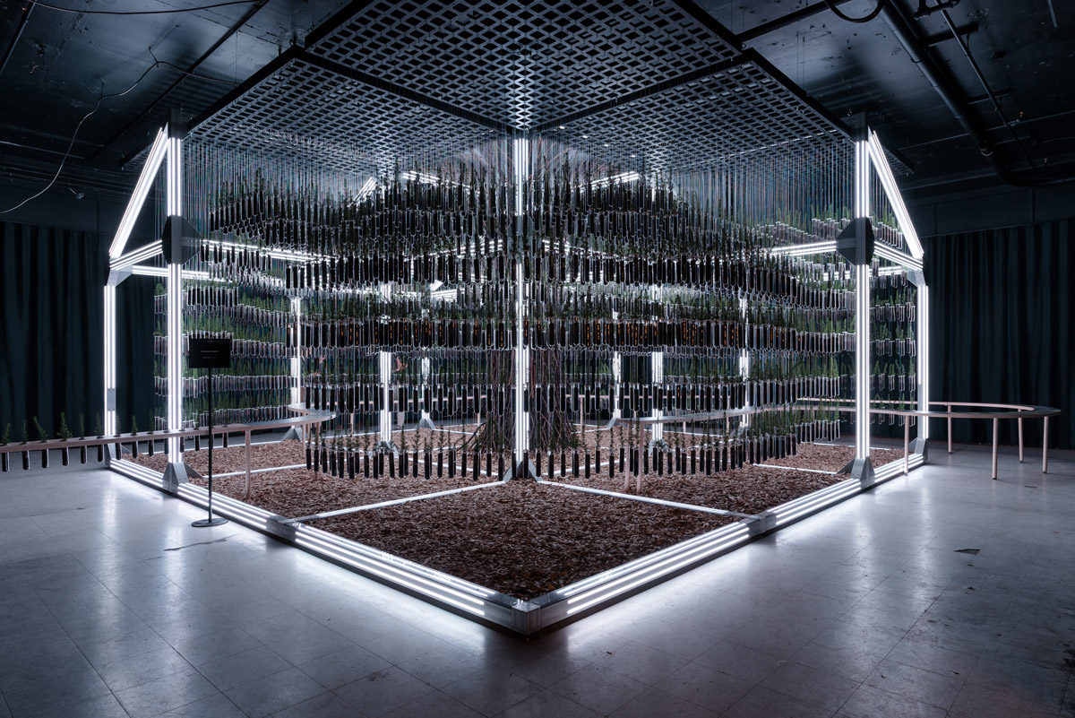 Immersive Installation Creates Sensory Experience for Sustainable Construction