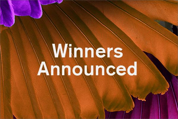 GM2TT Winners Announced