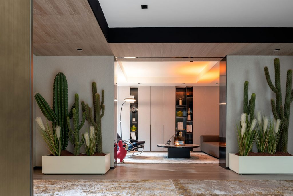Hallway interior with biophilic design featuring cactus planter