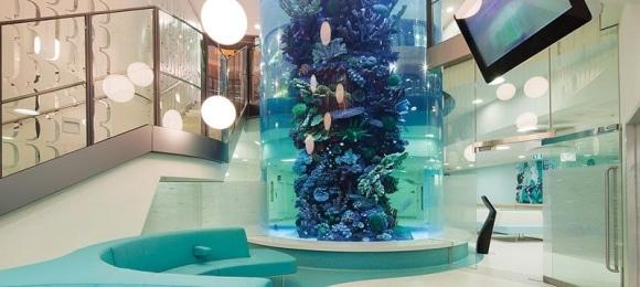 Clinical Benefits of Aquarium Design