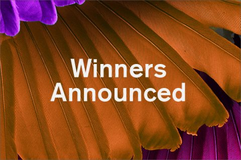 Get me 2 the Top winners announced for interior design student competition