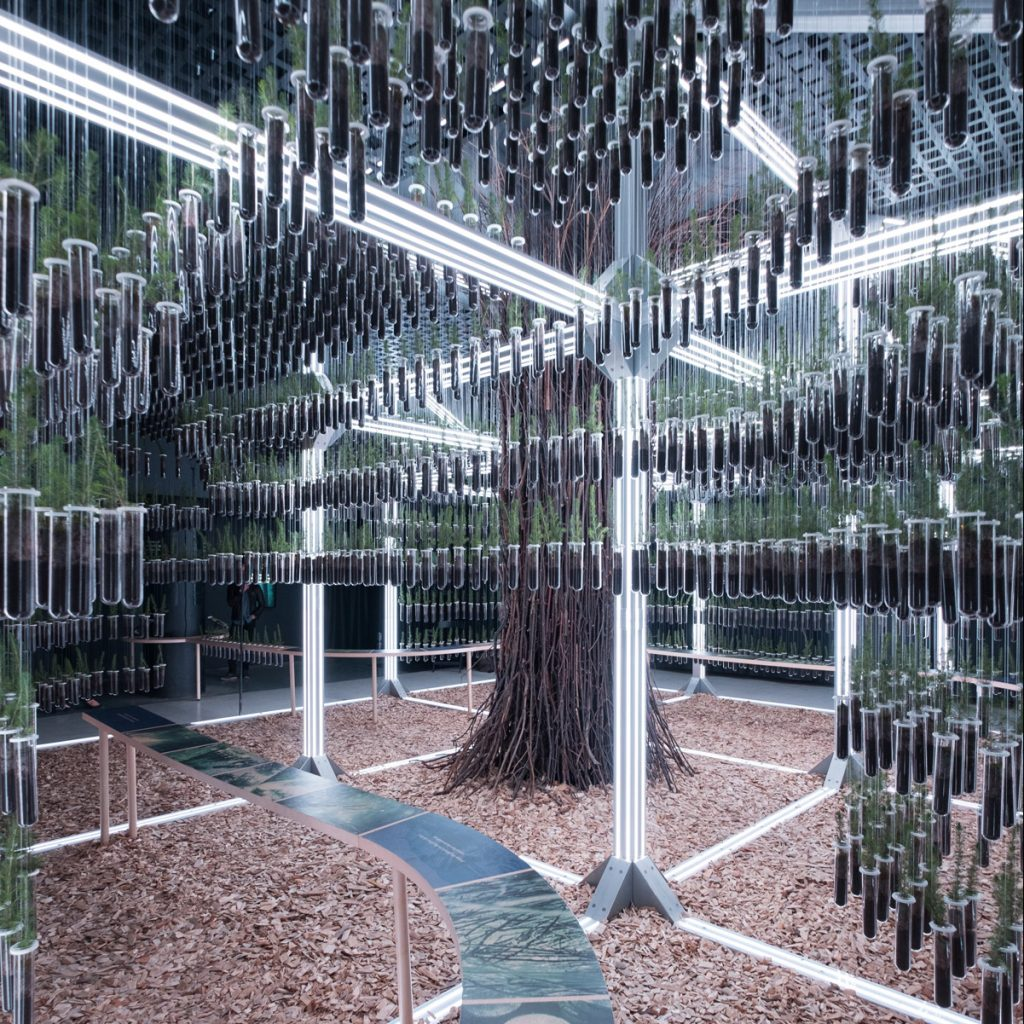 STACKLAB'S public space design with immersive exhibit, Wild Abode